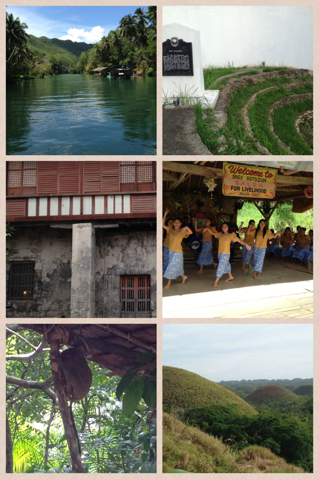 Bohol Beach Club's countryside tour covers  tarsier encounter, Chocolate Hills, blood compact marker (the wrong one and the right one, not a joke!) old churches and lunch at Loboc River's floating restaurant. Decent rest rooms at every stop, yay!